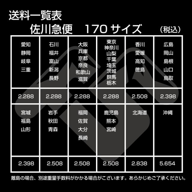 佐川急便 170サイズ